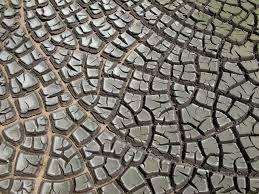 Produto final do tratamento de água e esgoto, lama pode ser descartada com segurança